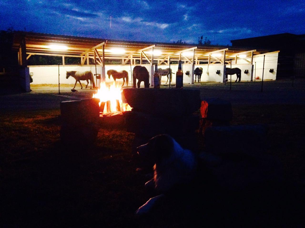 Zentrum für Pferdegesundheit: Abendstimmung vor den Therapieboxen