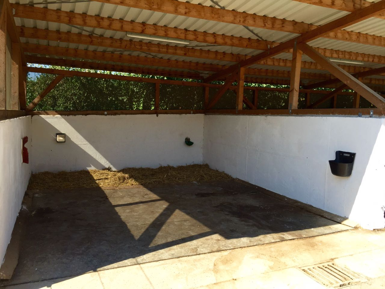 Zentrum für Pferdegesundheit: Therapiebox für Gastpferde