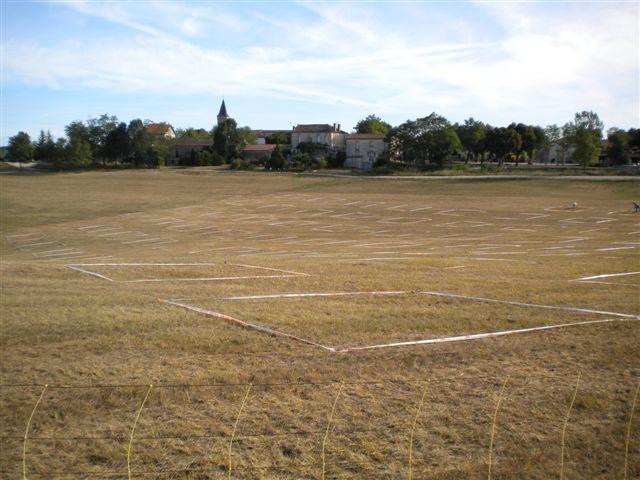 Ein Feld vorbereitet für: Cavage au carre