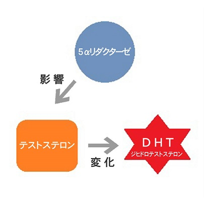 DHTの仕組みを解説したイラスト