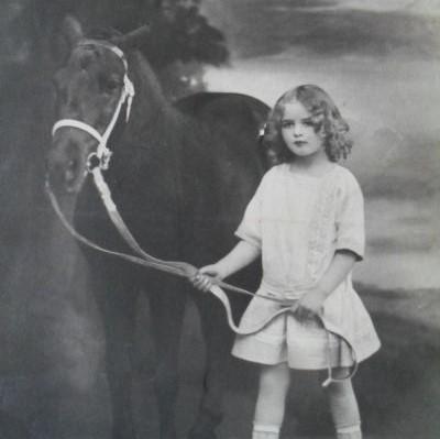 Pony führen