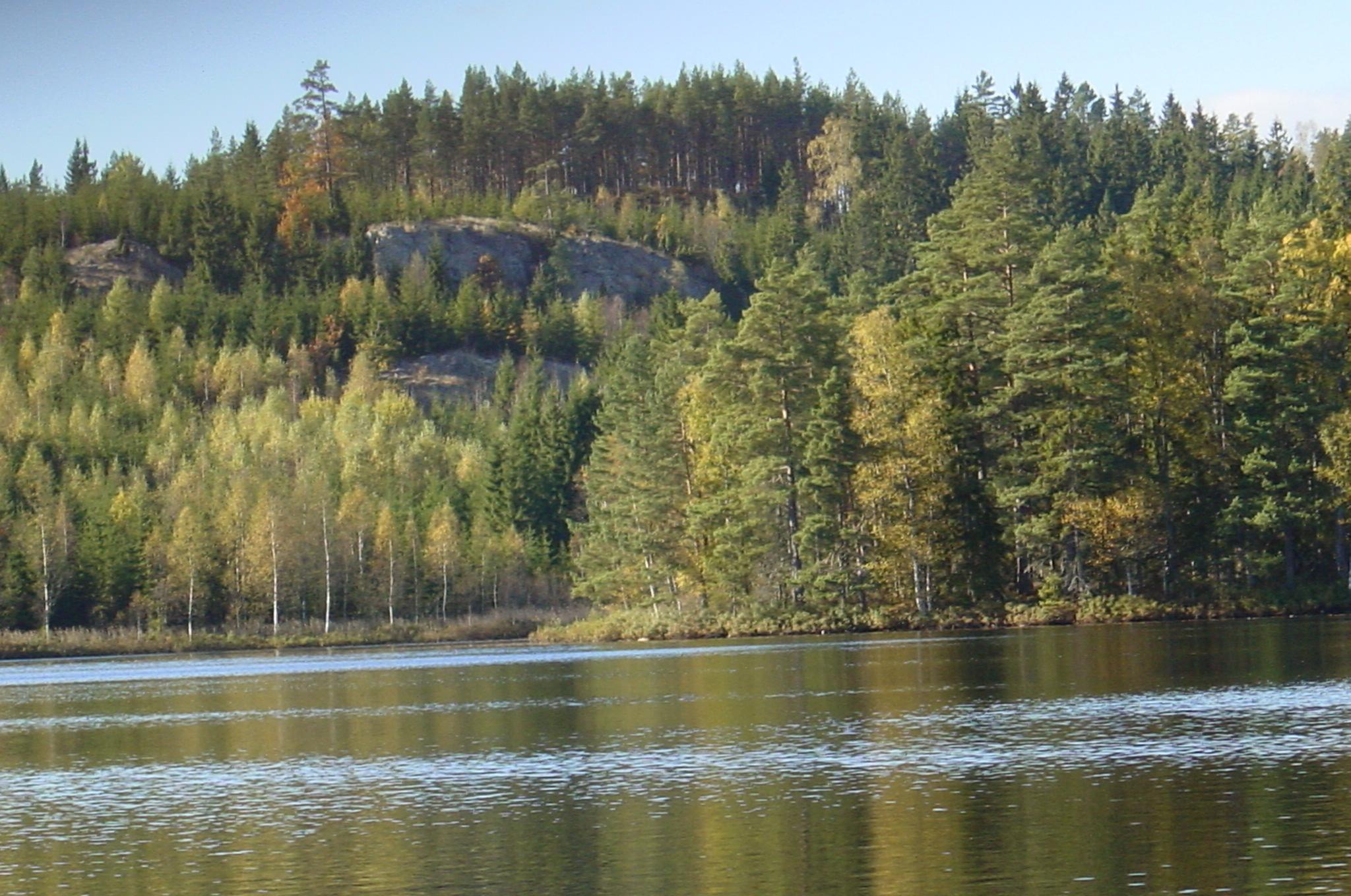 Der See im Spätsommer