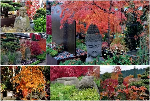 Herbst Buddha