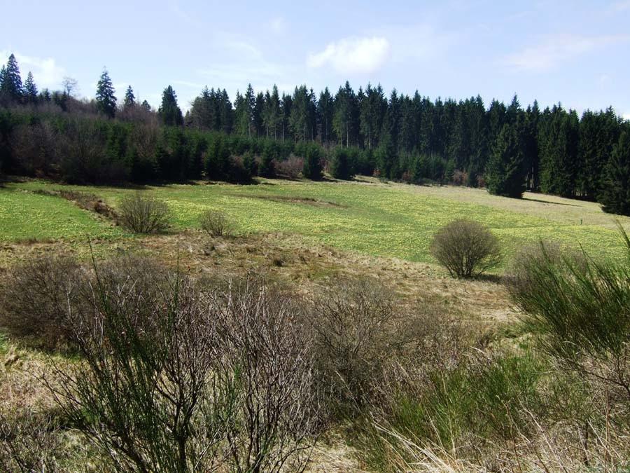 Wiedergewonnene Täler durch Naturschutzmaßnahmen (Foto: V. Gossmann)