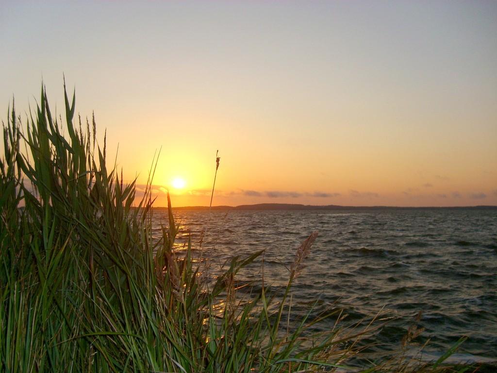 Sonnenaufgang auf der Insel Görmitz (7/2008) - © Betonwolke