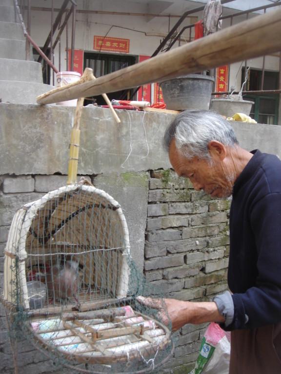 Homme et oiseau à Jingdhezen (Chine)