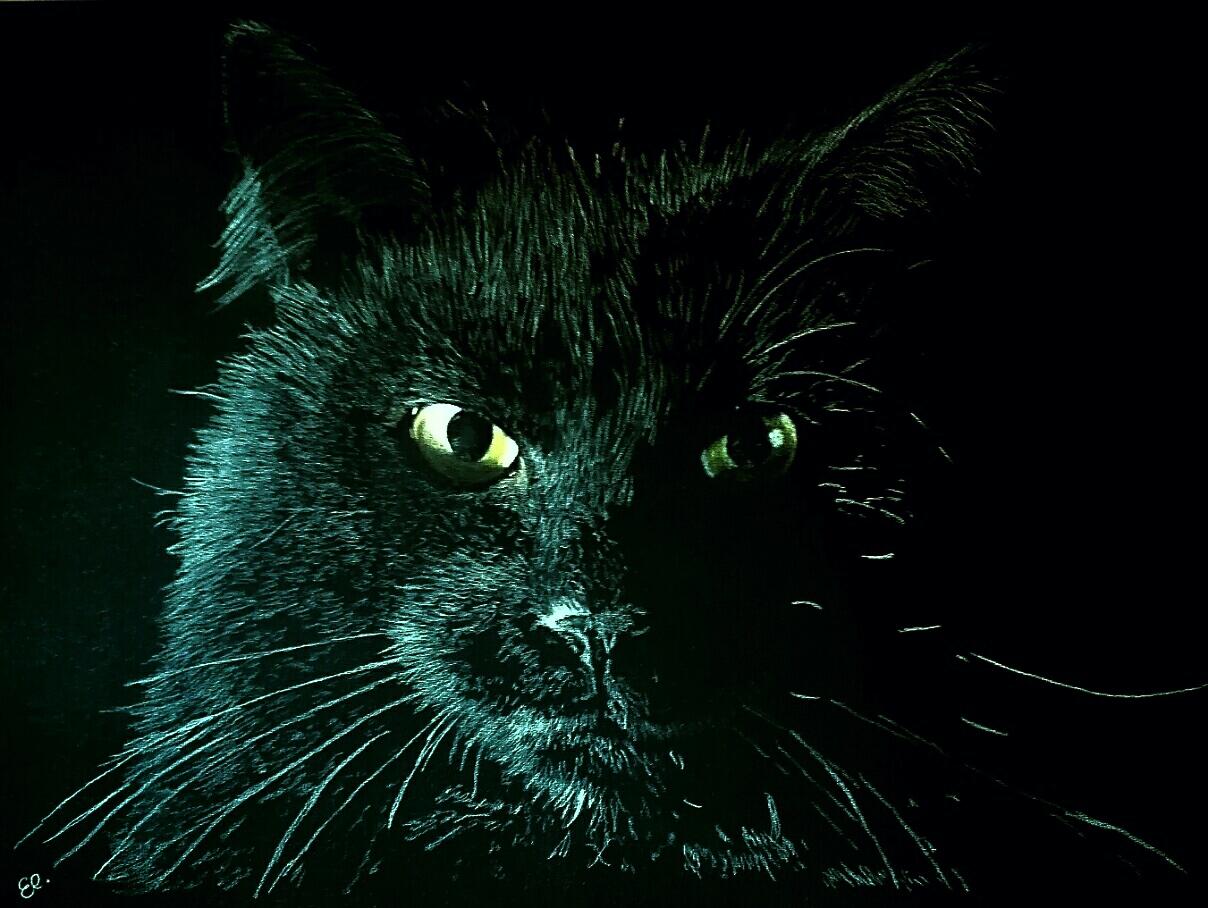 Tierserie2, Katze, 60x80cm