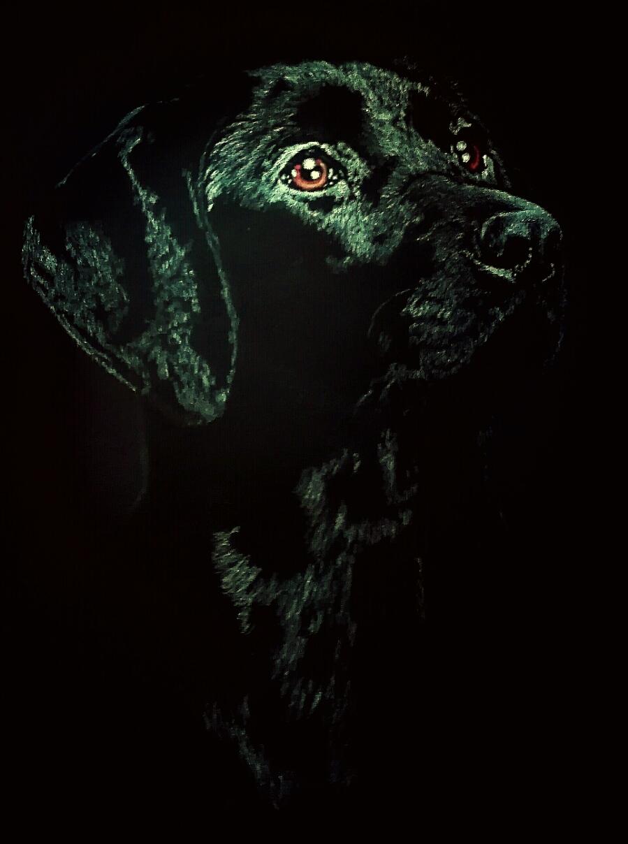 Tierserie 1, Hund, 60x80cm