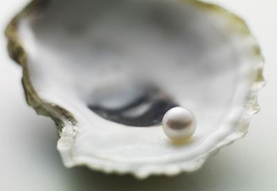 Süßwasser Auster mit Perle