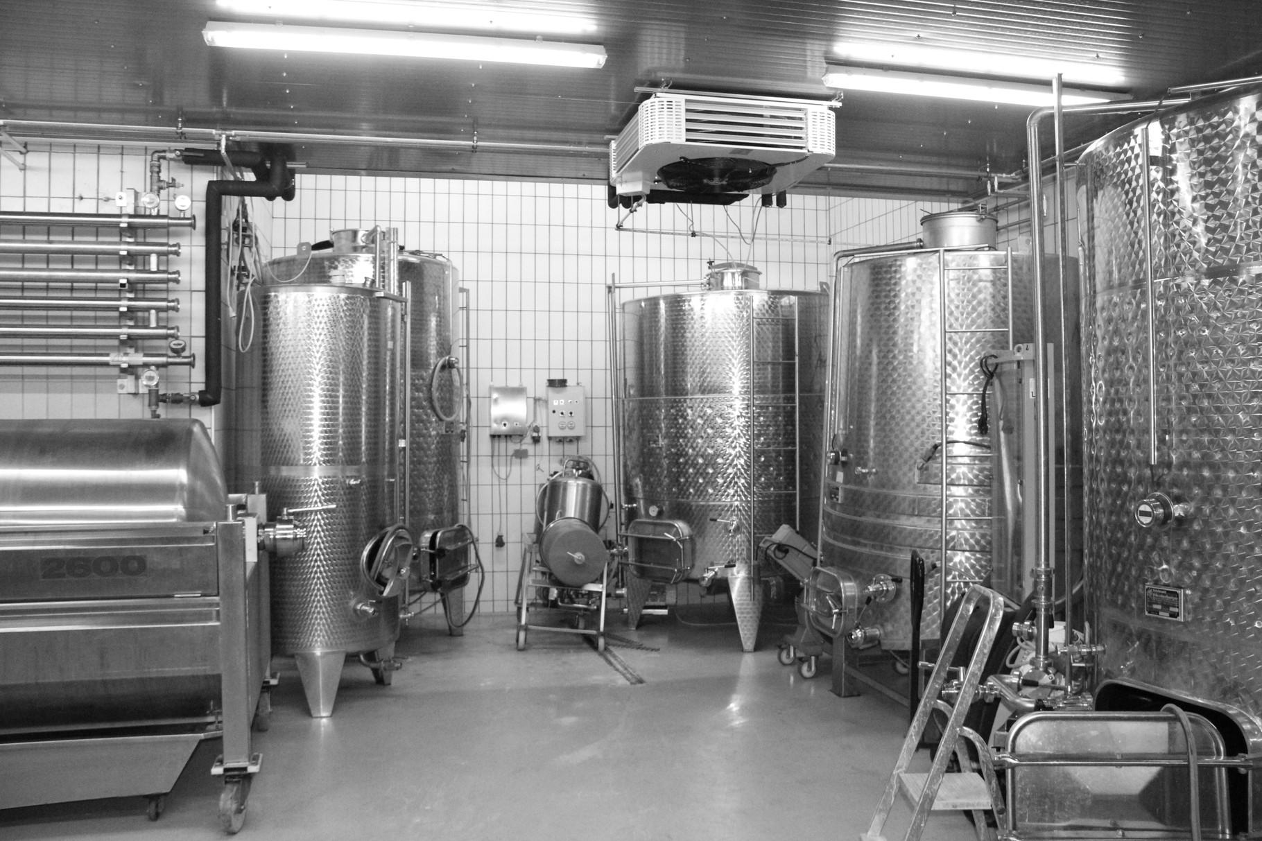 Weingut Arkadenhof Mandl, Rechnitz