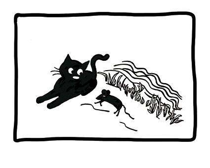 Und weil wir Katzen das alles wissen ...