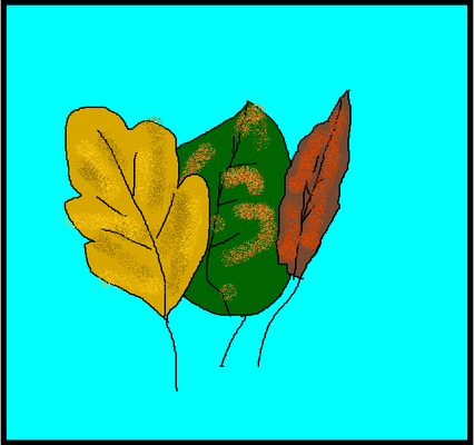 Лилиана С. 2б