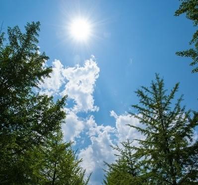 暑い夏。汗ばむ季節。革ベルトは不向きな環境になりました。