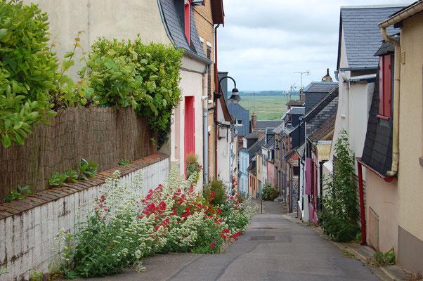 Somme Tourisme - Séjour - Hauts de France - Baie de Somme - Saint-Valéry sur Somme - Parc du Marquenterre - oiseaux - Saint- Firmin les Crotoy - Groupe - Voyage - Somme