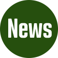 News der Steinenbergschule