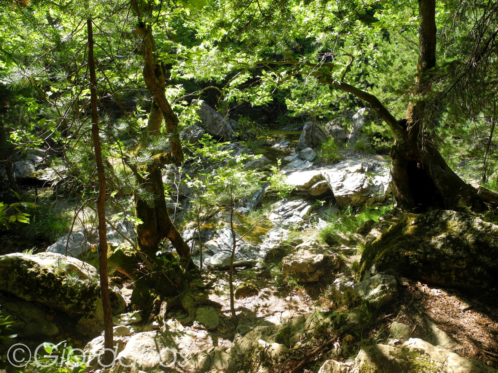 Drimonas Evia Griechenland-traumhafte Natur rund um die Wasserfälle