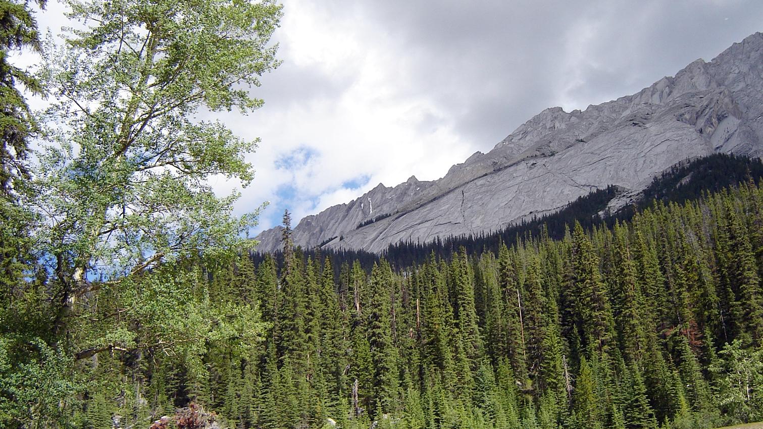 Der Bergkamm entlang vom Medecin Lake