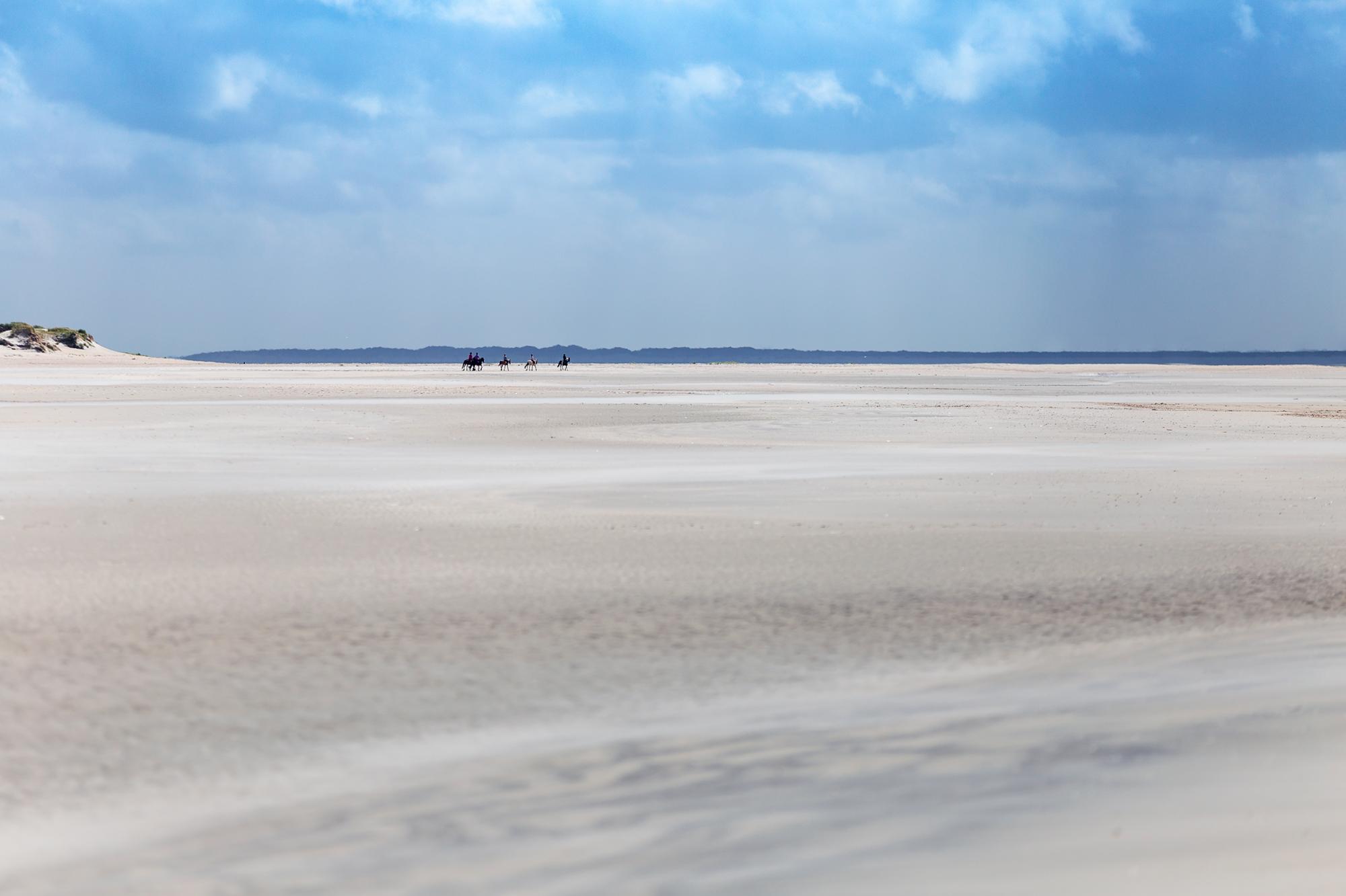 Soweit das Auges sieht: Sand, Strand und absolute Stille auf Römö.