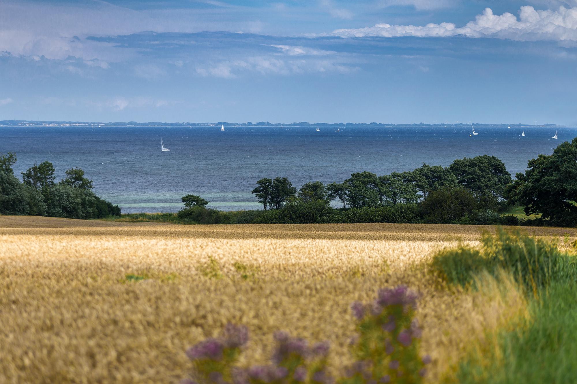 Landschaftsfoto eines Küstenabschnitts bei Westerholz, Ostsee.