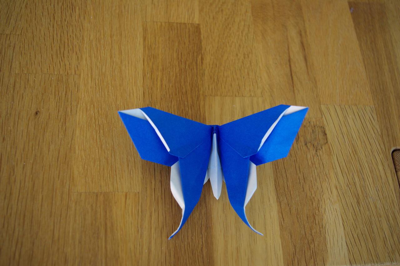 Schmetterling entworfen von Michael La Fosse