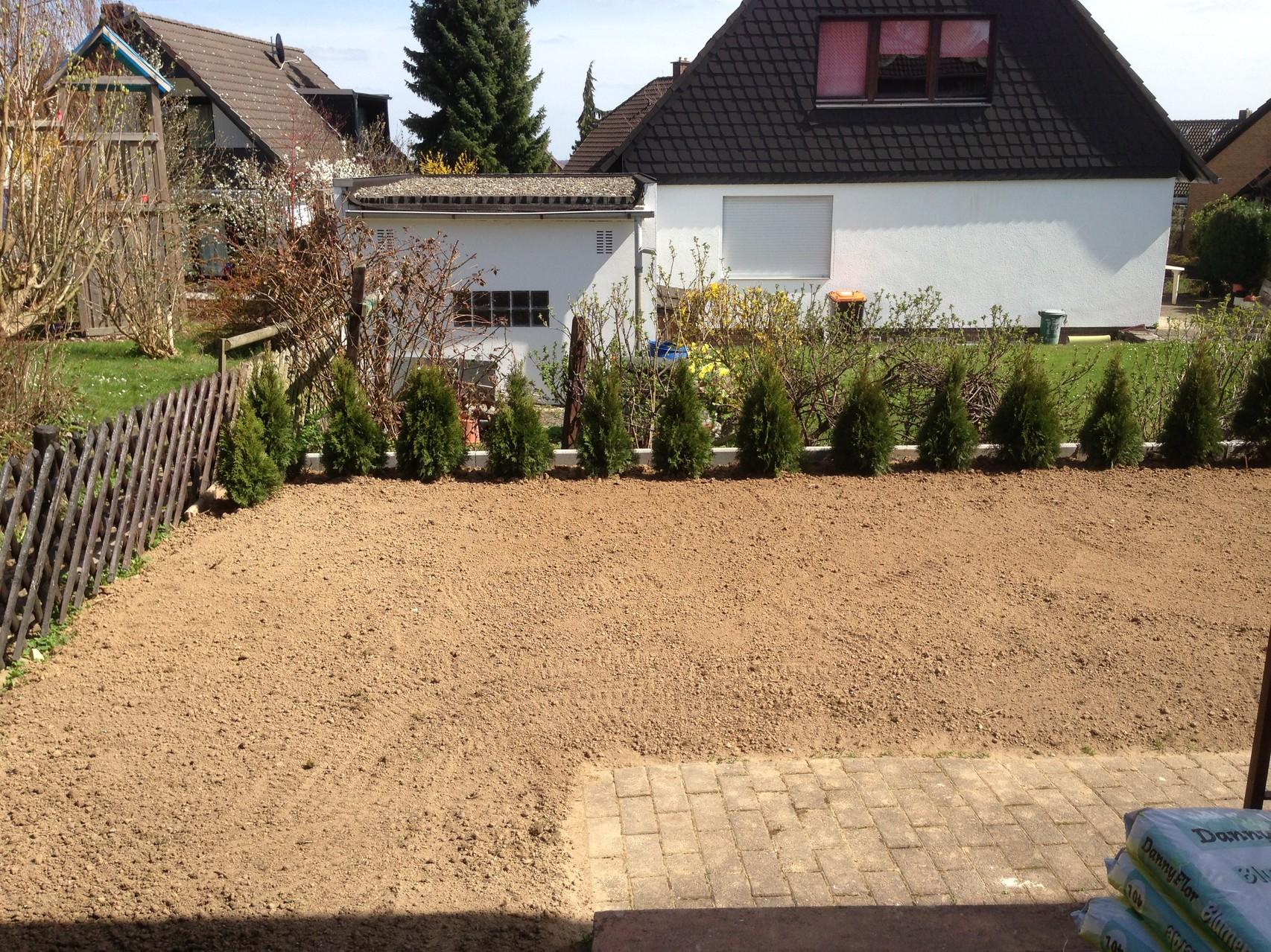 Pflanzung einer Hecke, Rasen neuansaat