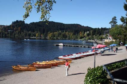 Sommer am Titisee