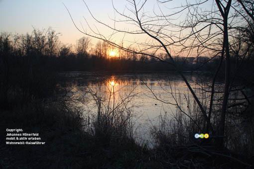 Abend im Naturschutzgebiet Taubergießen