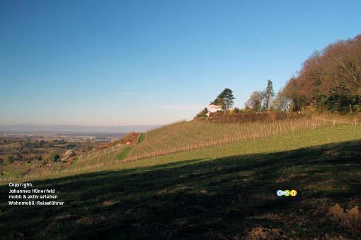 Blick Richtung Vogesen bei Kippenheim