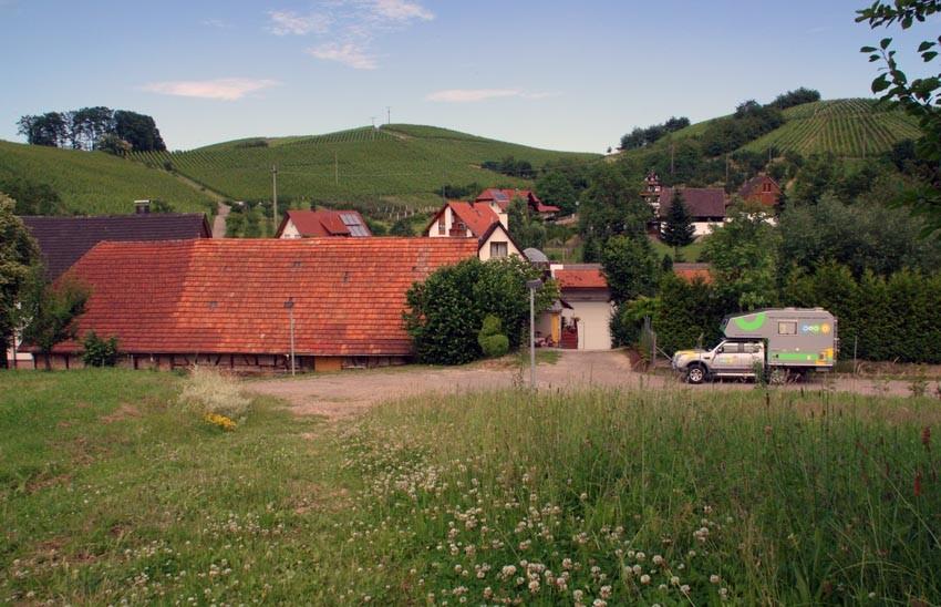 Auf einem Weingut bei Oberkirch