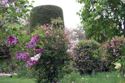 Englischer Garten beim Landhaus Ettenbühl