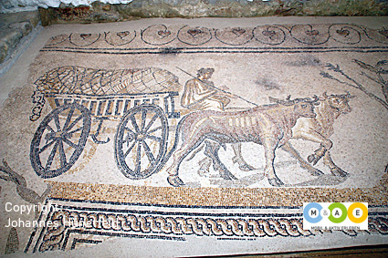 Römische Mosaiken in Orbe