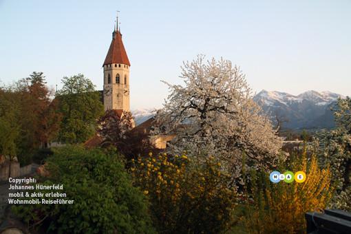 Frühling in Thun