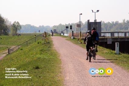 Rad fahren am Rhein