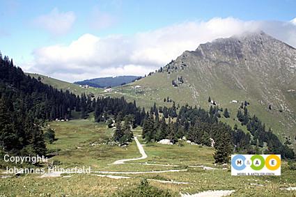 Col de Jamon