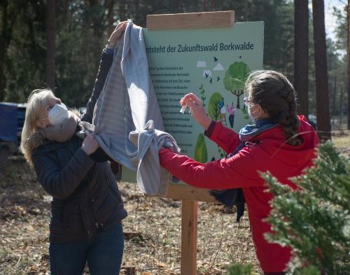 Start für das Projekt Zukunftswald an der Waldkirche Borkwalde