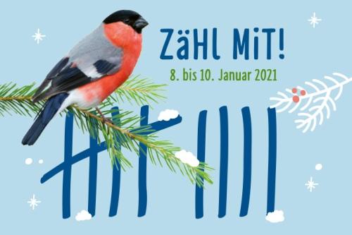 Grafik: NABU/Mathias Schäf, iStock/lilipom, publicgarden