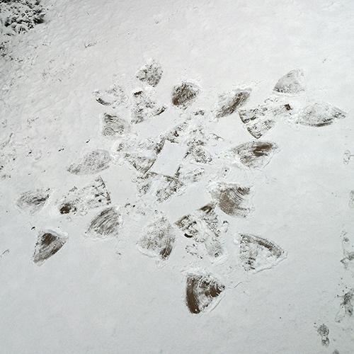 Schneeflocke aus Schneeengeln vom Balkon fotografiert Marlene P.