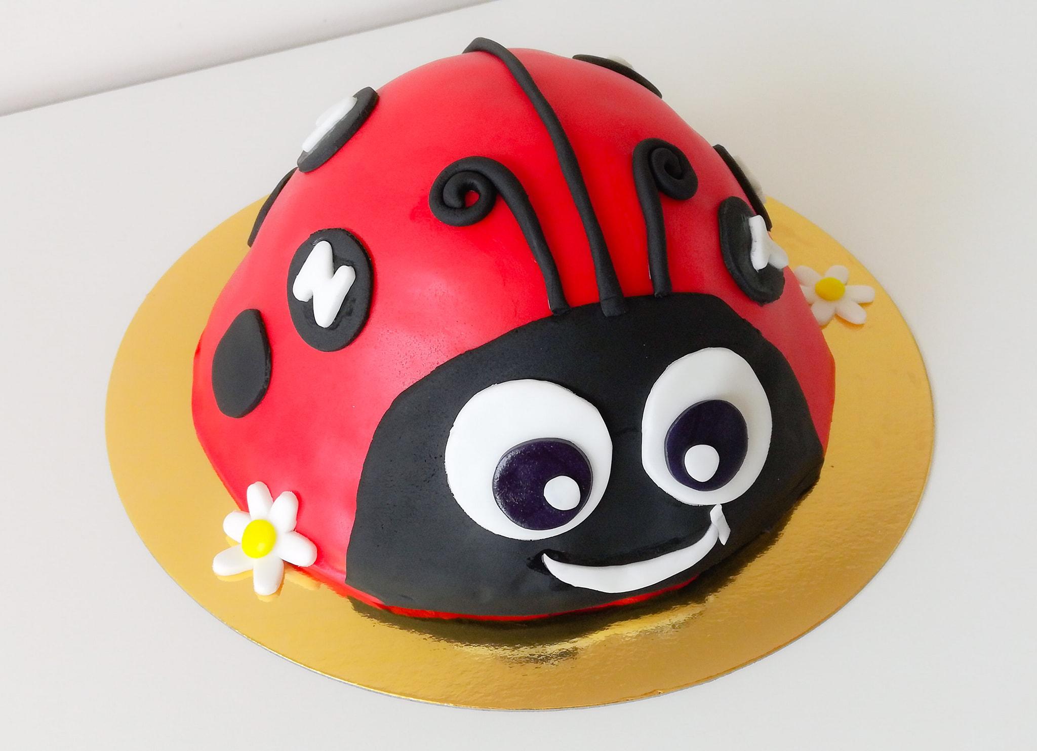 Gâteau anniversaire coccinelle 3D