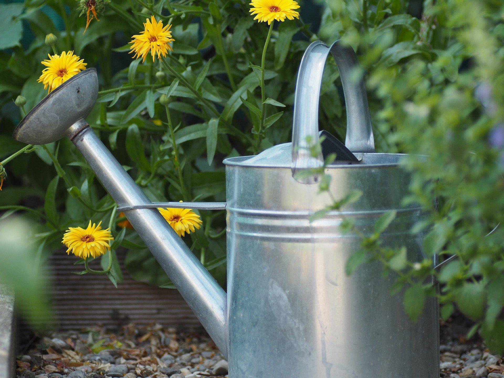 Bürgerantrag gemäß § 24 GO NRW: Wasserzapfstelle auf dem Frankenbadplatz schaffen; Urban-Gardening-Initiativen unterstützen