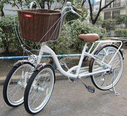 三輪自転車(前二輪の三輪車)
