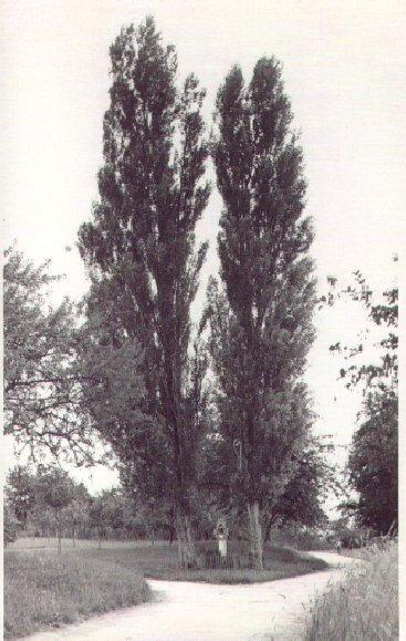 Bildstock am Heerweg (Zieligweg) Dr. Eugen-Essig-Straße