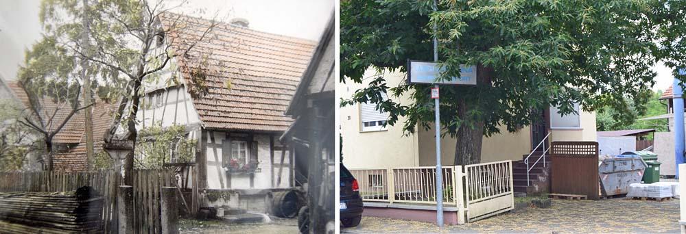 Neudorfstraße 20, 1955 & 2018