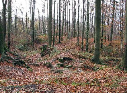Bereich der Kernburg