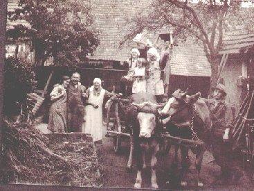 Kuhfuhrwerk mit Familie Buhlinger in der Römerstraße