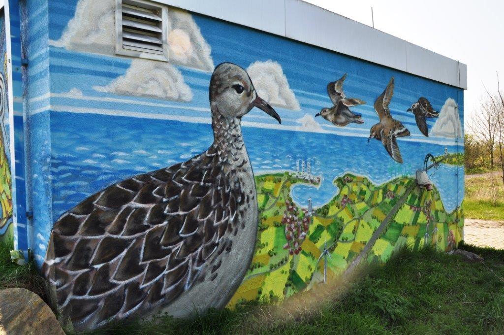 Vögel am Strom-(Häuschen)