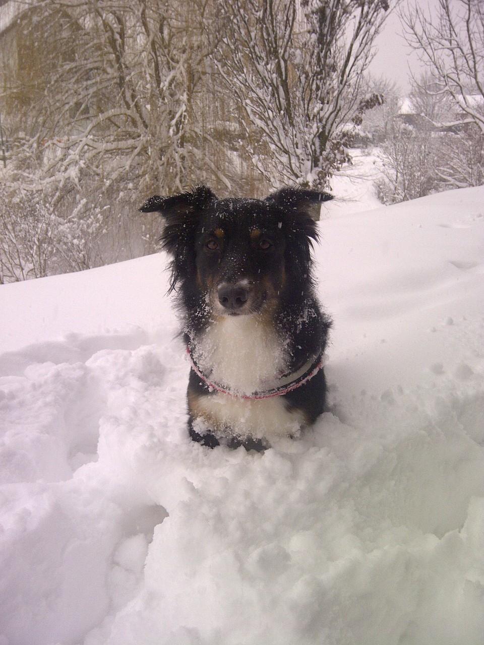 Im Schnee stecken :-).