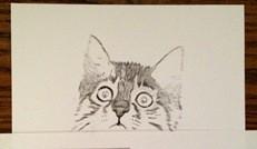 Katze zeichnen 1