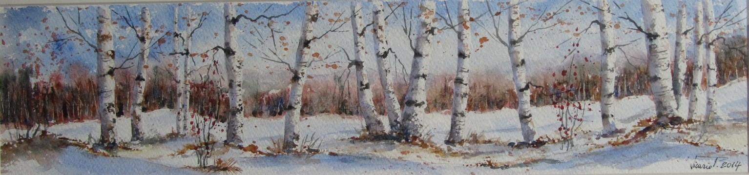 """""""Inverno"""""""