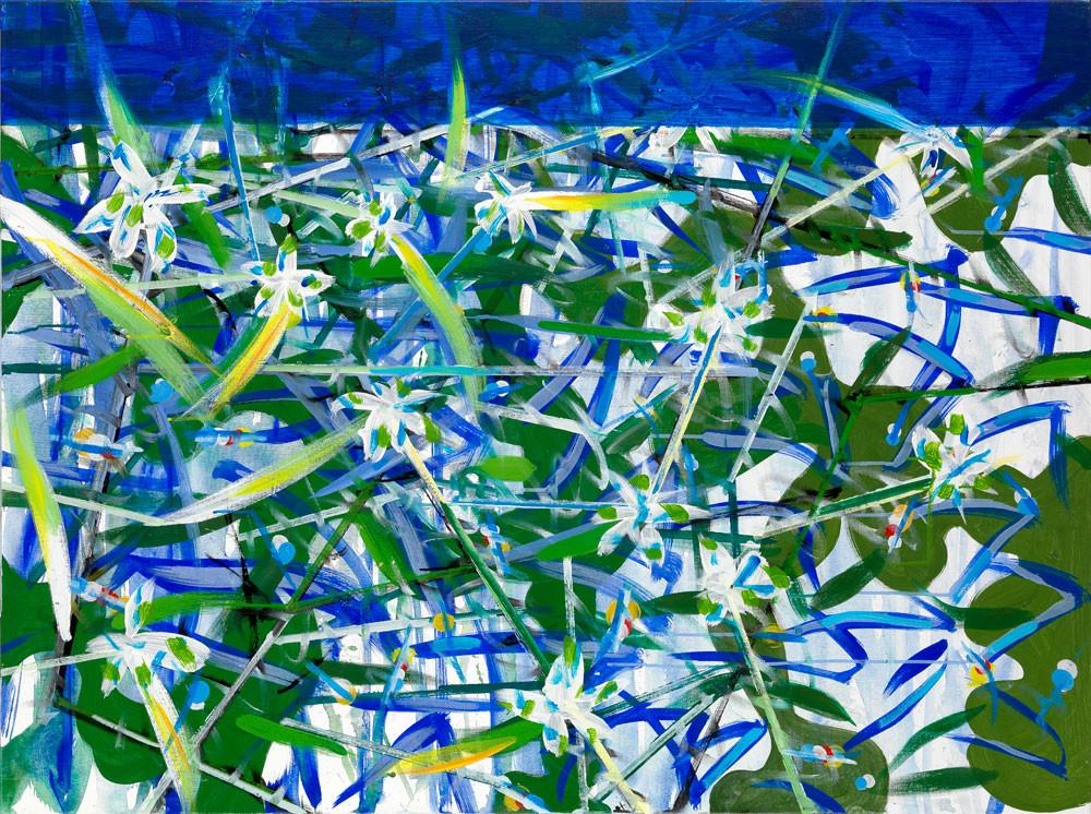 Entrte saponaire et utriculaire - 2013 - Acrylique sur toile / 97x132 cm