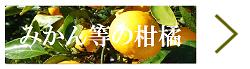 広島県江田島市産野菜